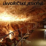 javoricko_1