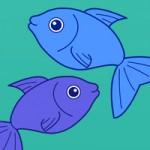 Ochutnávka rybích pokrmů 18.10.-19.10.2014
